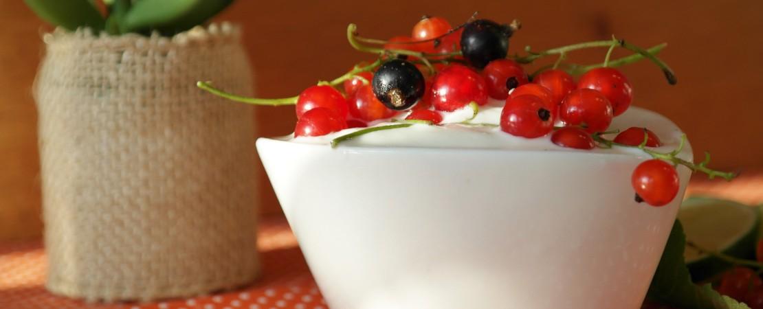 Coppetta di yogurt con mirtilli rossi e neri