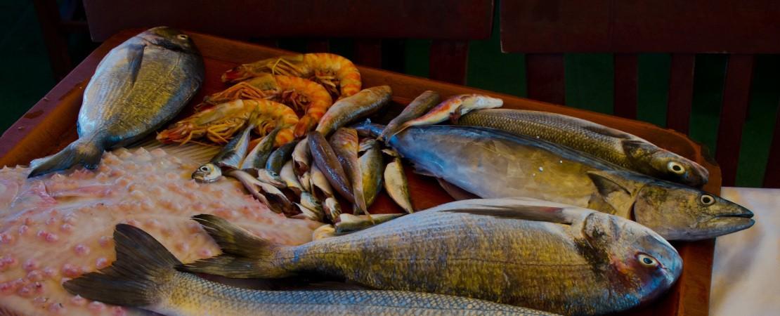 Acciughe con altri pesci