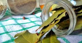 Vaso in vetro appoggiato sul tavolo con alloro