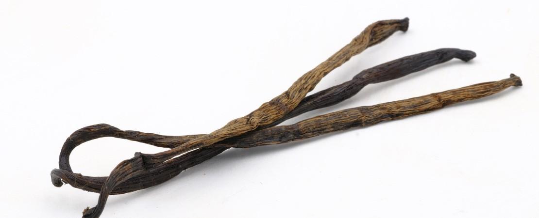 Tre bacche di Vaniglia - quoci.it